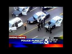 WHEN POLICE DOGS ATTACK (GRAPHIC CONTENT) - YouTube