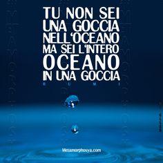 Buona settimana e luminosa vita❤️ #Metamorphosya #Rumi #lafilosofiadelcambiamento #cambiamento #oceano #essere