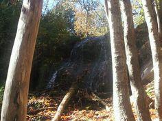 Beautiful hike in the mountian today
