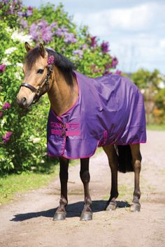 Horseware Amigo Pony Hero 6 Lite Turnout - Waterproof 1200 denier turnout sheet with 210T oxford polyester and a breathable lining. Offers cross srucingles, twin chest straps, and a tail flap. Twin chest closure with touch tape for adjustability. An excellent sheet for slightly warmer climates or sudden temperature fluctuations. Perfect for spring!