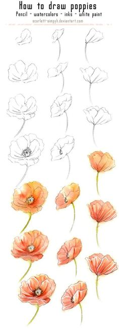 20 Delicate Colorful Watercolor Flowers Painting Tutorials In Images 20 zarte bunte Aquarell Blumen malen Tutorials in Bildern Art Floral, Art Paintings, Watercolor Paintings, Flower Watercolor, Watercolor Water, Tattoo Watercolor, Poppies Painting, Watercolor Ideas, Flower Paintings