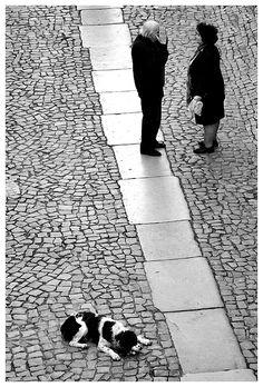 Conspiracy talk @ Óbidos, Portugal