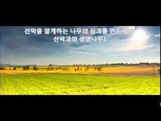 선악과를 만든 이유1 - 선악을 알게 하는 나무와 생명나무 - YouTube