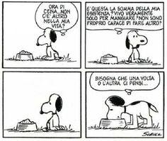 I love snoopy! Snoopy Comics, Funny Comics, Peanuts Comics, Charlie Brown Peanuts, Peanuts Snoopy, Lucy Van Pelt, Snoopy Love, Vignettes, Cartoon