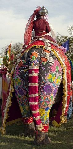 The colors of India. I wonder how long it takes to beautify an elephant. :-)