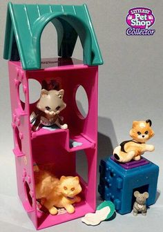 Purry Kittens with Kitty Playtime Condo
