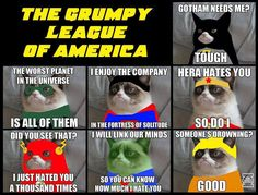 Funniest grumpy cat, grumpy kitty, grouchy cat ...For more hilarious pics and funny humor visit www.bestfunnyjokes4u.com/rofl-funny-pic-of-the-day-8/