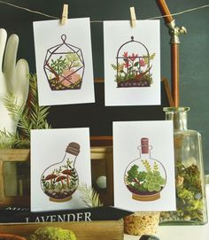 Hand-drawn and reprinted on 4x6-inch card stock, this set of four terrarium post cards makes for gorgeous correspondence or snappy decor.