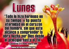 Lunes – Eclesiastés 3:11 RV95 « Letreros Cristianos.com :: Imagenes Cristianas, Imagenes para Facebook, Frases Cristianas