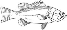 Fish Embroidery Pattern