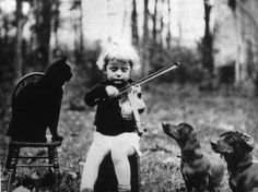 Child. Violinist. Cat. Dog. Forest performance. Audience. Playtime. Vintage photography.