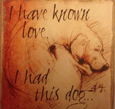 I have known Love , I had this Dog!