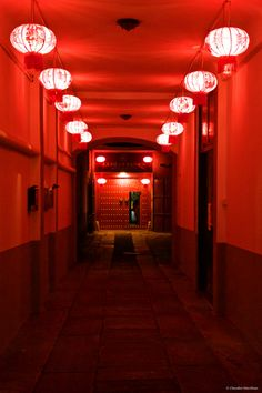 The red tunnel Aesthetic Light, Red Aesthetic, Dark Circus, Peppermint Candy, Writing Inspiration, Prompts, Cherry, Chinese, Neon Signs