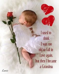 This is how I feel everyday !!! LOVE, LOVE, LOVE being a grandmother...