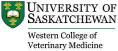 November is Pet #Cancer Awareness Month, so to help raise awareness and funds for cancer research, we're supporting the Western College of #Veterinary Medicine (WCVM)'s Oncology Research Fund.     You can help in the fight against pet cancer by connecting with us on social media. 'Like' us on #Facebook  in November and we'll donate $0.50, or follow us on #Twitter and we'll donate $1 to WCVM's fund.