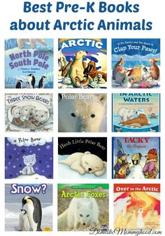 We have been learning all about Arctic Animals this winter and here are some of the kids favorite Pre-K Books about Arctic Animals that the kids have … animals Artic Animals, Animals For Kids, Baby Animals, Preschool Books, Preschool Activities, Preschool Winter, Animal Activities, Animal Books, Paper Snowflakes