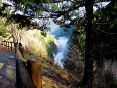 The Gold River Canyon Gold River BC Gold River, Vancouver Island, Waterfall, Traveling, World, Natural, Pictures, Outdoor, Viajes