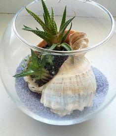39 DIY Sand Art Terrarium Ideas & Projects Ever - Miniature Garden Ideas Succulents In Containers, Cacti And Succulents, Planting Succulents, Terrarium Cactus, Garden Terrarium, Glass Terrarium Ideas, Succulent Gardening, Container Gardening, Indoor Vegetable Gardening