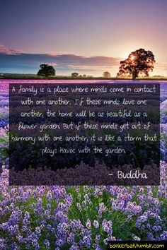 So so true-Buddah said it right!