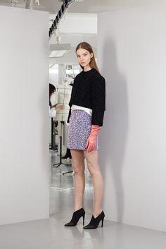 Dior Pre-Fall 2013 - Slideshow - Runway, Fashion Week, Reviews and Slideshows - WWD.com