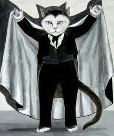 Gato vampiros Cat Boarding, Crazy Cats, Cat Lovers, Cats And Kittens, Cool Cats, I Love Cats, Halloween Cat, Happy Halloween, Vintage Cat