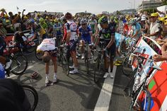 The crash stopped most of the peloton in the final 200m