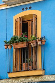 Flower pots grace a window | Tarragona, Spain