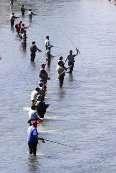 Fishing alaska on pinterest fishing rivers and fly fishing for Anchorage alaska fishing