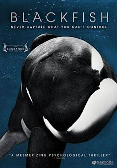 Killer whales are beloved majestic, friendly giants yet infamous for their capacity to kill viciously. Blackfish unravels the complexities o...Nov 2013