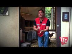 How to Choose the Right Chicken Coop -- keep in mind space for each chicken, access for gathering eggs and cleaning, as well as what predators you have to deal with in your area  Also read: Building A Chicken Coop  http://www.tractorsupply.com/know-how_Chicken-Coops_build-a-chicken-coop