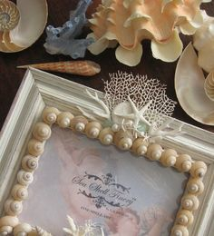 TRUE LOVE Fine Shell Art 5 X 7 Mirror AND Photo Frame SHABBY, ROMANTIC, COASTAL, SEA SHELL FINERY