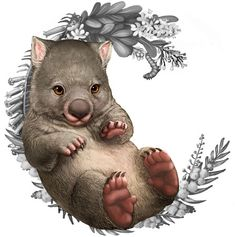 Illustration of a wombat for the Bush Babies II coin series - My list of beautiful animals Australian Animals, Australian Art, Australian Tattoo, Cute Wombat, Cute Animal Drawings, Cute Baby Animals, Perth, Pet Birds, Illustration Art