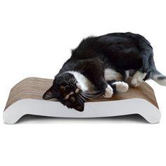 30 Pet Ideas Pets Cat Pet Supplies Small Pets