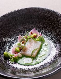 Pike perch pickled onions, wild garlic juice - Design Food by Antonio photography ! Food Design, Star Food, Food Decoration, Molecular Gastronomy, Creative Food, Food Presentation, Food Plating, Food Styling, Gourmet Recipes