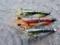 Shrimp - simple and realistic fly tying instructions by Ruben Martin