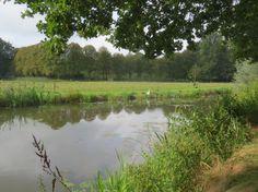 2014-09-07 Mooi watertje bij Den Alerdinck