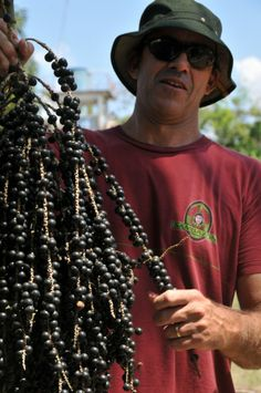 Sambazon worked directly with EcoCert to create the original fair trade acai market