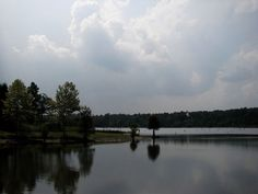 Falls Lake State Park, a North Carolina State Park located nearby Butner, Cary and Creedmoor 4 hours 21 min. from Stafford.