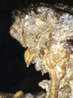 Witch-like stalactite! Camuy