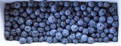 SingleMalt-CapeBreton-NorvellHimself: Blueberries and Cape Breton Go Hand In Hand