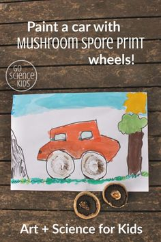 Paint a car with mushroom spore print wheels! How to make awesome tyres using mushroom spore prints, and learn about fungi biology. Creative STEM art or STEAM activity for kids – Go Science Kids. Creative Writing Ideas, Creative Activities For Kids, Fun Crafts For Kids, Creative Kids, Craft Activities, Art For Kids, Biology For Kids, Science For Kids, Science Crafts