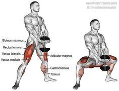 Dumbbell sumo squat (aka dumbbell plié squat). A compound lower-body exercise. Target muscle: Gluteus Maximus. Synergistic muscles: Quadriceps (Rectus Femoris, Vastus Lateralis, Vastus Medialis, Vastus Intermedius), Adductor Magnus, and Soleus. Dynamic stabilizers: Hamstrings and Gastrocnemius.