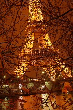 The Eiffel Tower in autumn. I wish to either live in Europe for a couple years and see all the sites during each season or make may trips there.