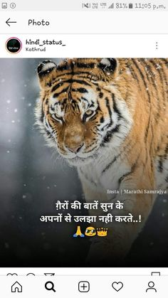 2826 Best soothing shayari images in 2019 | Quotations