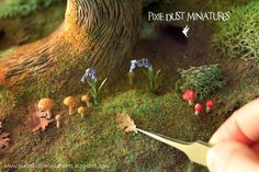 Pixie Dust Miniatures: Enchanted Forest in the Making...