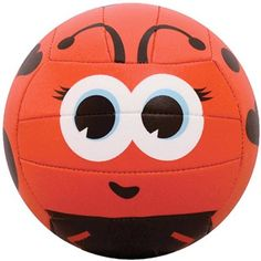 Molten MS500 Lady Bug Volleyball