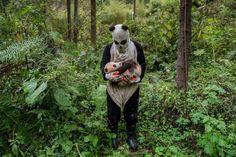 22 döbbenetes fotó, amelyekhez foghatót még sosem láttál   latnodkell