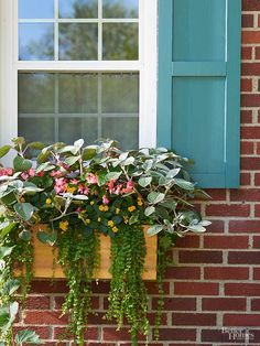 Instantly add curb appeal to the front of your home with DIY cedar shutters. These beautifully easy shutters can be painted to match any home exterior color or stained to make them stand out. Follow our step by step directions to cut, measure and build these shutters.