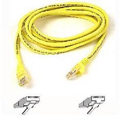 3ft Ultra Spec Cables Industrial Outdoor Shielded Cat6 Cable with Tethered Dust Cap