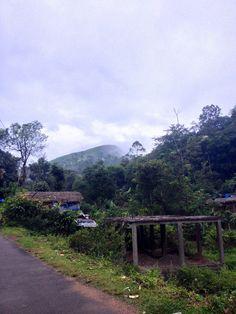 Thekkady #Kerala